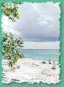 Strand auf Lovers Key